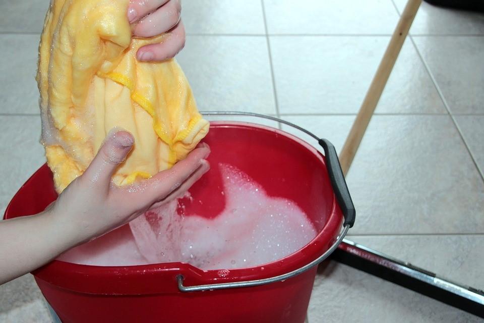 Eurêka Emplois Services - entretien de la maison